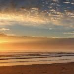 Nový zéland – vídejko