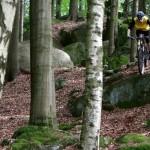 Cvičenka trail
