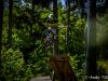 bikepark-moninec-otviracka-2020-47
