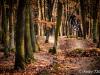 tocna_trails-11
