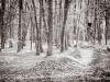 tocna_trails-20