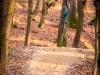 tocna_trails-4